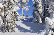 Tænk dig om i super sneen