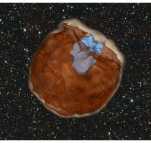 Exploderande stjärna chockar sin granne