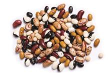 Påskgodis - Närodlade proteiner