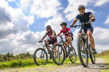 Bikehotel Lindenhof in Südtirol – Fit durch Ihren Aktivurlaub mit dem MTB