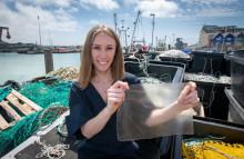 Kunststoffalternative aus Fischabfall gewinnt den internationalen James Dyson Award 2019