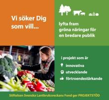 Grön fond söker innovativa projektidéer