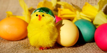 Månedens SU-venlige madtip: Påske(æg)