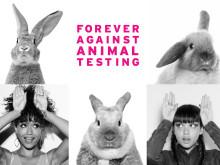 Europa-parlamentet støtter et globalt forbud mod dyreforsøg inden for skønhedsindustrien
