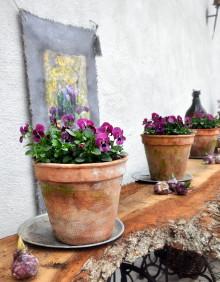 Pressvisning av Vår i kruka samt vårfloret på Sofiero