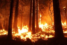 Wildfire Smoke Filter Solution Guide