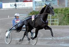Nominerade till Årets Häst 2012