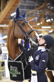 Klart med gemensamt kval på Elmia Scandinavian Horse Show även 2017