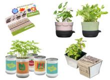 Inspiration till vårens odling