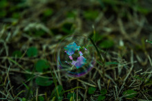 The (partial) death of filter bubbles