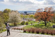 Oplev Oslo med ny SKAM-guide
