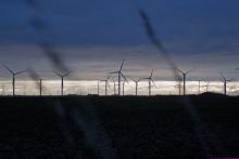 BT powers UK digital growth with Scottish windfarm deals