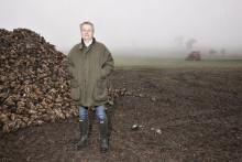VIDEO - Ny sockerbetssort ser bra ut på Rydsgårds Gods