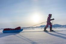 Jade's vandretur til Nordpolen