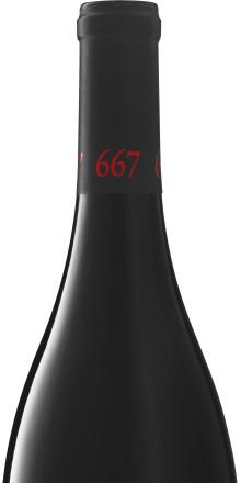 Pinot Noir från USA under hundralappen - FYND!