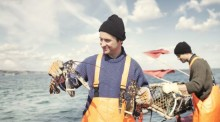 Upplev årets stora hummerfiske