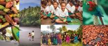 Brother refuerza su compromiso por detener la desforestación desde Perú a Papúa Nueva Guinea