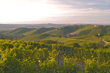 Djupdykning i Piemonte