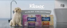 A touch of royal lux with the new Kleenex Luxury Collection