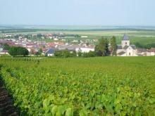 Champagne Pierre Péters - Grand Cru från Le Mesnil!