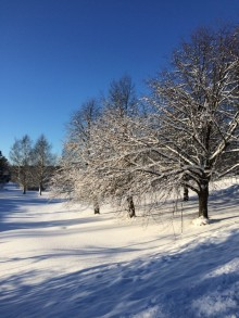 Barnplantorna erbjuder föräldrautbildningshelg i Skellefteå