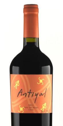 Sverigepremiär för Antityal – småskaliga biodynamiska viner från Chile!