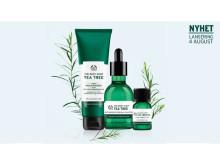 Økologisk Tea Tree fra Kenya - The Body Shops redning mot uren hud