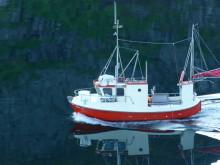 Möller ja Pikasol -tuotteiden raaka-aineena käytetään vain elinvoimaisia kalakantoja