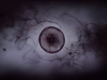 Moons of Madness ARG teaches Google AI 298 phobias