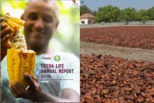 Cocoa Life Annual Report 2018: Framsteg och nya mål för Cocoa life 2025