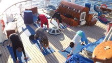 Oplev temacruise med Star Clippers