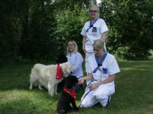 Hundar nytt inslag i vården inom rättspsykiatrin