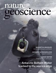 Sjöelefanter har hjälpt forskare att lösa havsdjupens gåta
