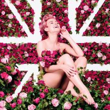 Kukoistavan ihana - The Body Shopin UUSI British Rose vartalosarja
