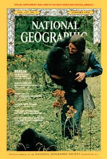 National Geographic visar nyproducerade dokumentärserien Dian Fossey: Dimhöljda hemligheter