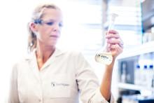 Biorefinery Leader Borregaard Goes Live with Zalaris Services