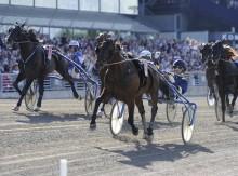 Elitloppet: Hemmahästen Iceland vann – och rekordhelg för ATG