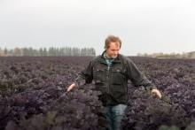 Mattias tycker att det är kul att odla nya produkter som Flowersprouts!