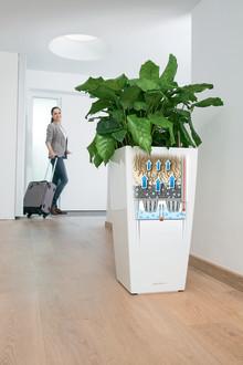 Das LECHUZA Erd-Bewässerungs-System - Maximale Pflanzenfreude bei minimalem Pflegeaufwand