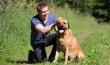 Aktiviteter för din blandrashund