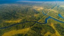 Nestlé tar i bruk satelittovervåking i kampen mot avskoging