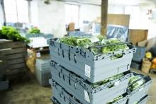 Returlådor implementeras i Restaurang- och storköksbranschen