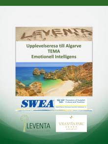 SWEA och Leventa i samarbete