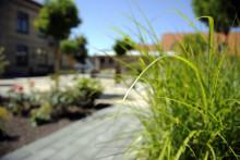 Betong, det naturliga valet för en hållbar framtid