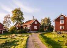 Tranås Energi får bidrag till fiberutbyggnad på landsbygden