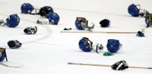 CIF satsar på forskning om hjärnskakningar