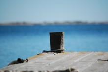 Så kan du rädda Östersjön på Allt för sjön 2014