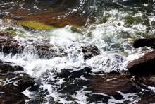 Seminarium i Almedalen 5 juli: Varmare, sötare, surare – Östersjön i ett förändrat klimat