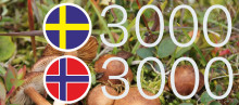 Tio givande år av landsöverskridande samarbete