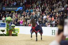 De unga ryttarna och publiken skapar magisk stämning – nyckeln till framgång för Gothenburg Horse Show 2017!